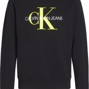 CK Sweat Neon Insert